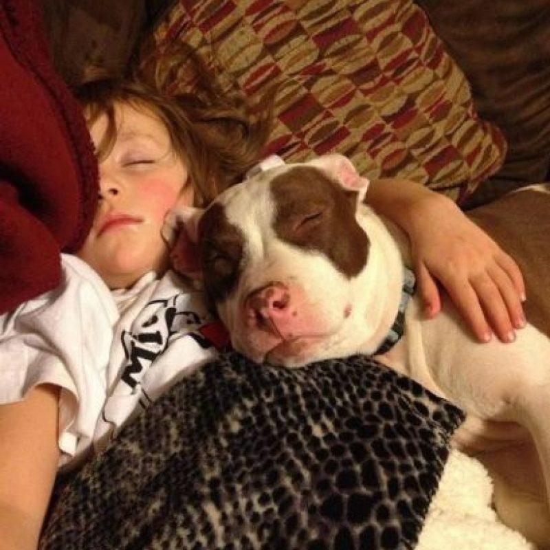 ¡A dormir! Foto:Pinterest