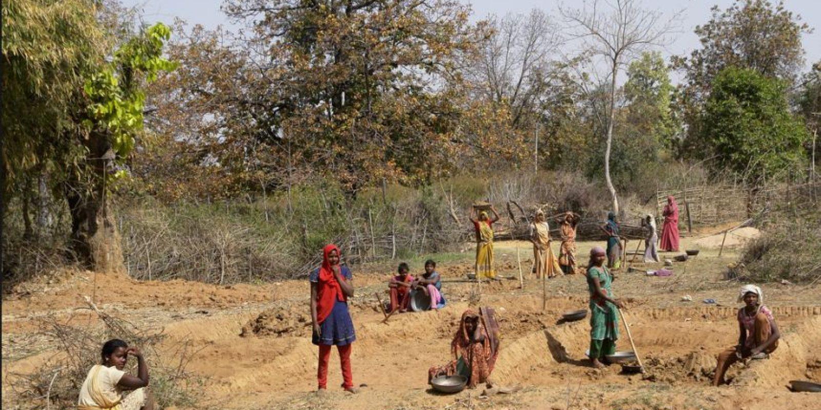 Sin darse cuenta, obreros taparon el hoyo y los residentes del lugar fueron quienes reportaron su muerte. Foto:Vía Wiki