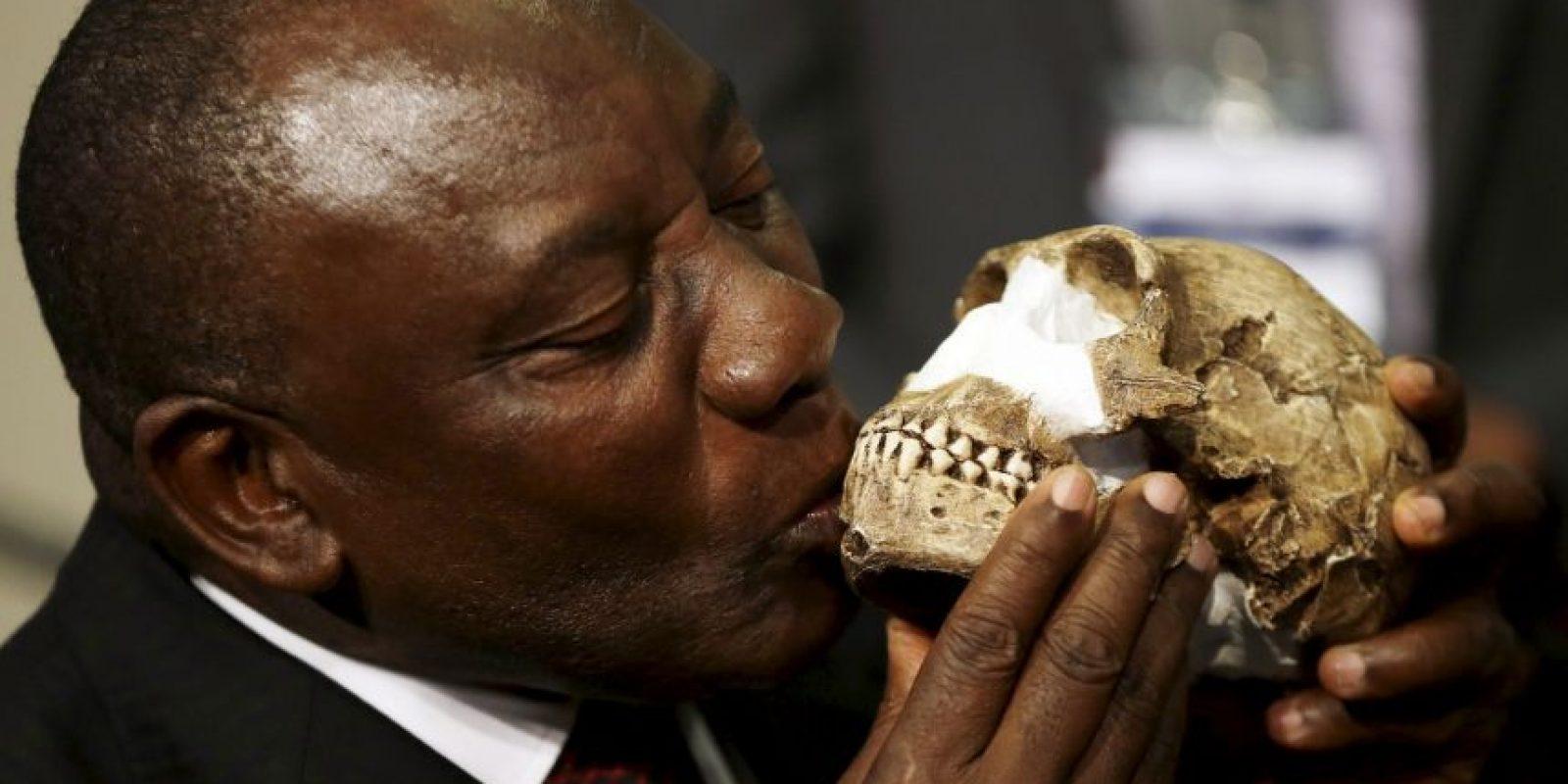 """""""Tenemos casi todos los huesos del cuerpo representados varias veces, lo que hace al Homo Naledi el fósil de nuestro linaje que mejor se conoce"""", expresó Lee Berger. Foto:AP"""