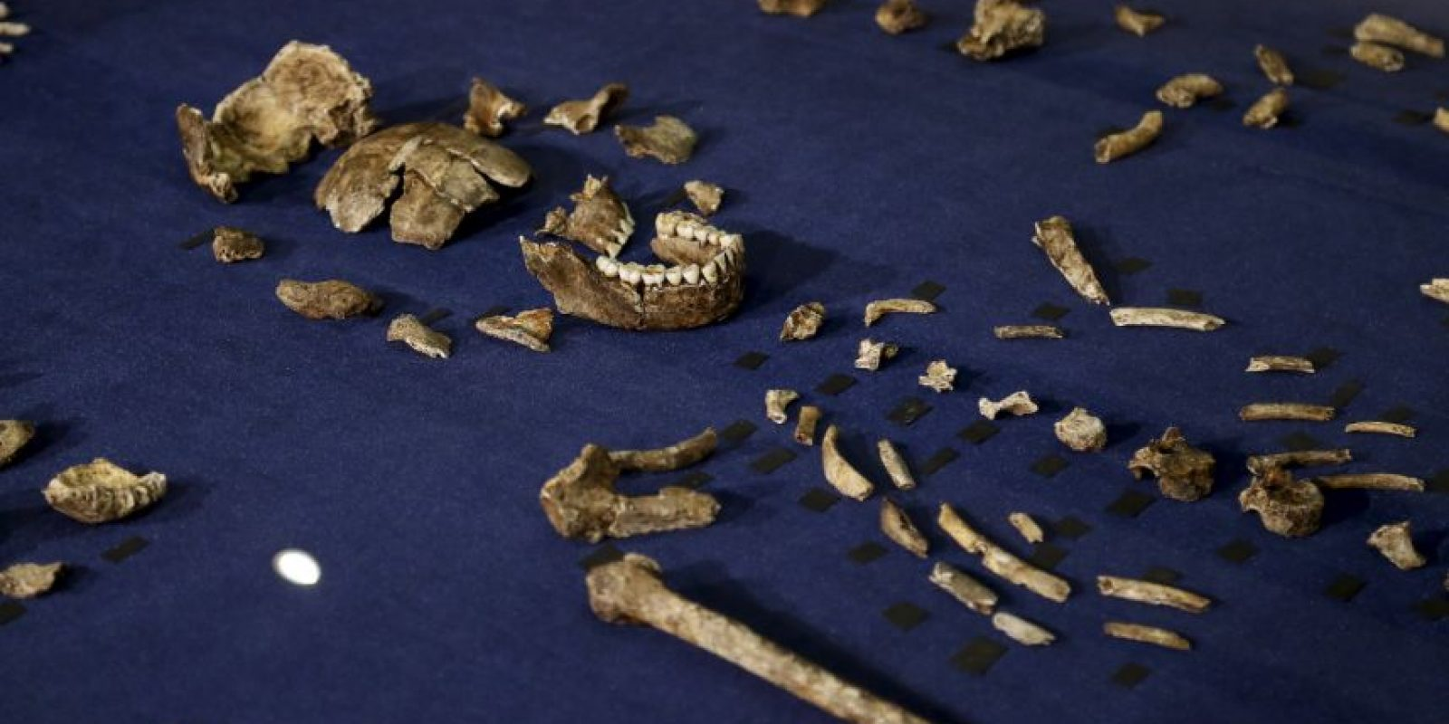 Se desconoce cómo fue que llegaron hasta allí los cadáveres. Foto:AP