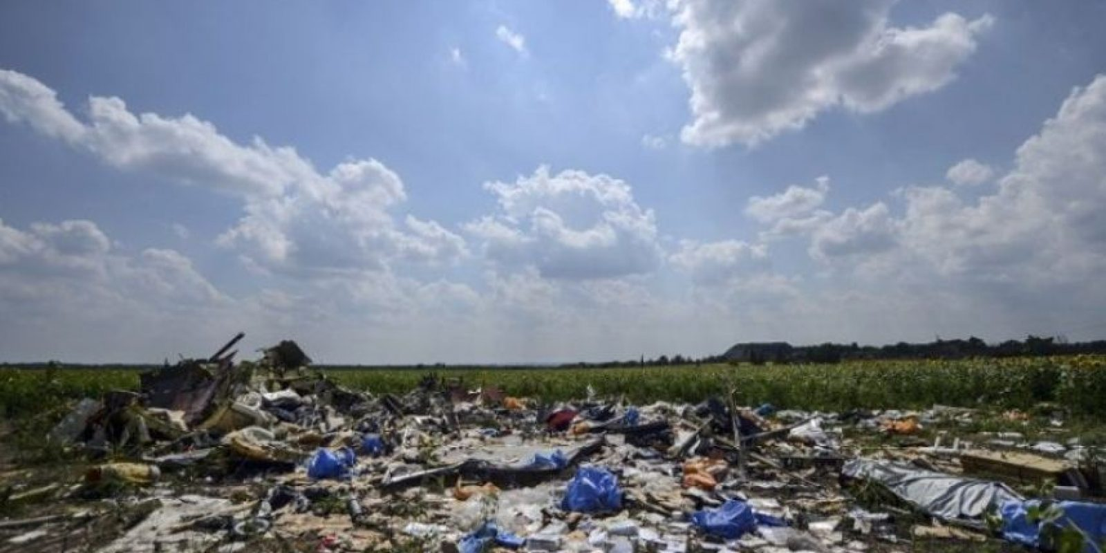 Vuelo MH17 de Malaysia Airlines Foto: AFP