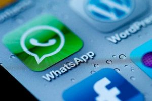 A pesar de que tienen otras apps, podrían vivir solo con WhatsApp y serían muy felices. Foto:Pinterest