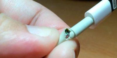 9 formas de proteger sus cables de iPhone, iPad y Mac para que duren