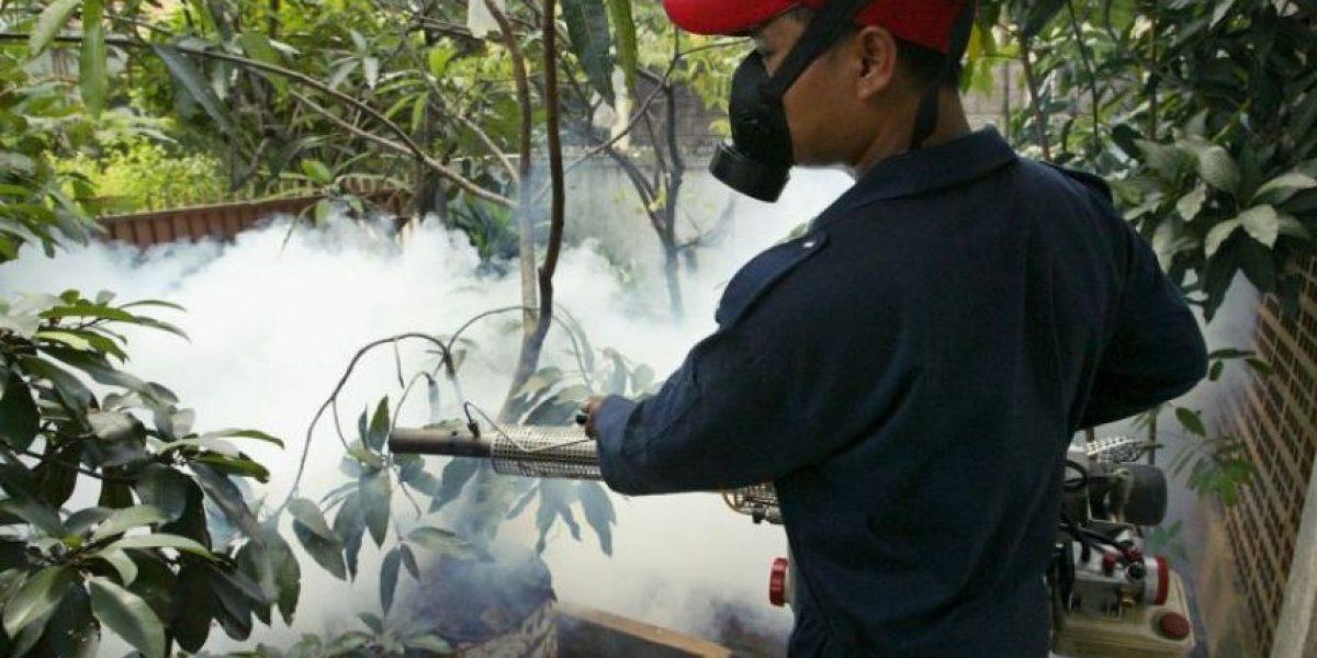 Alerta sanitaria en ocho departamentos por chikungunya
