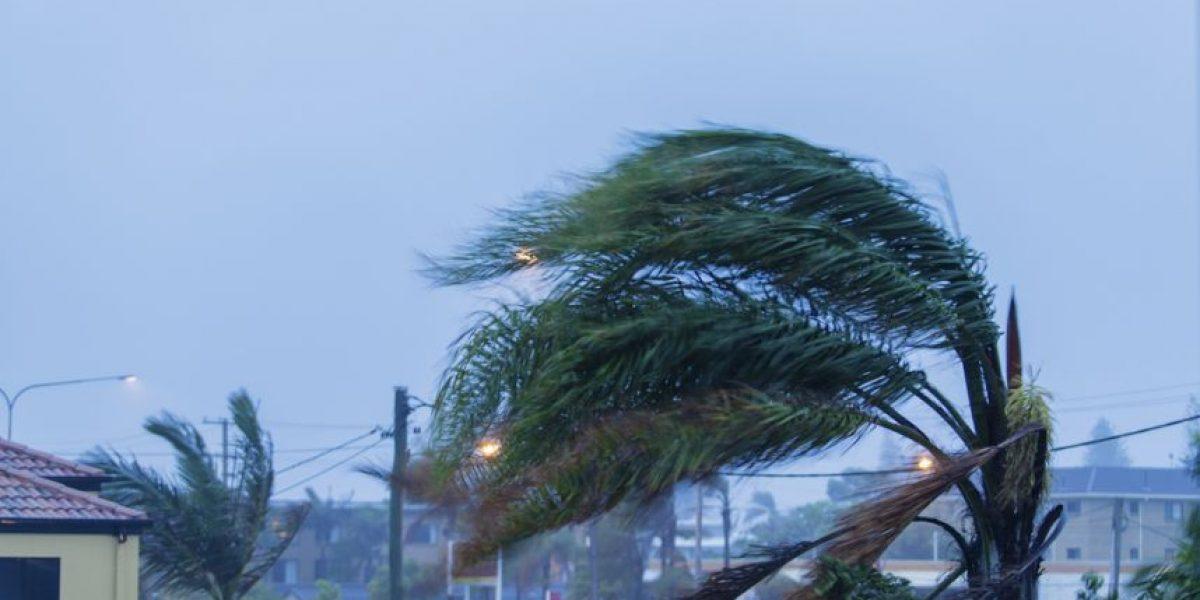 EEGSA activa estado de emergencia derivado de los fuertes vientos