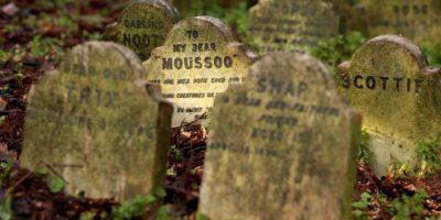 Una madre es detenida por degollar a su hijo en un cementerio