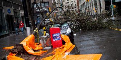 El automóvil tiro un árbol con el que también aplasto al niño Foto:Getty Images