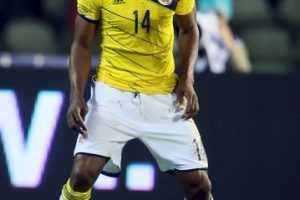 MEDIOS: Fredy Guarín (Colombia) Foto:Getty Images