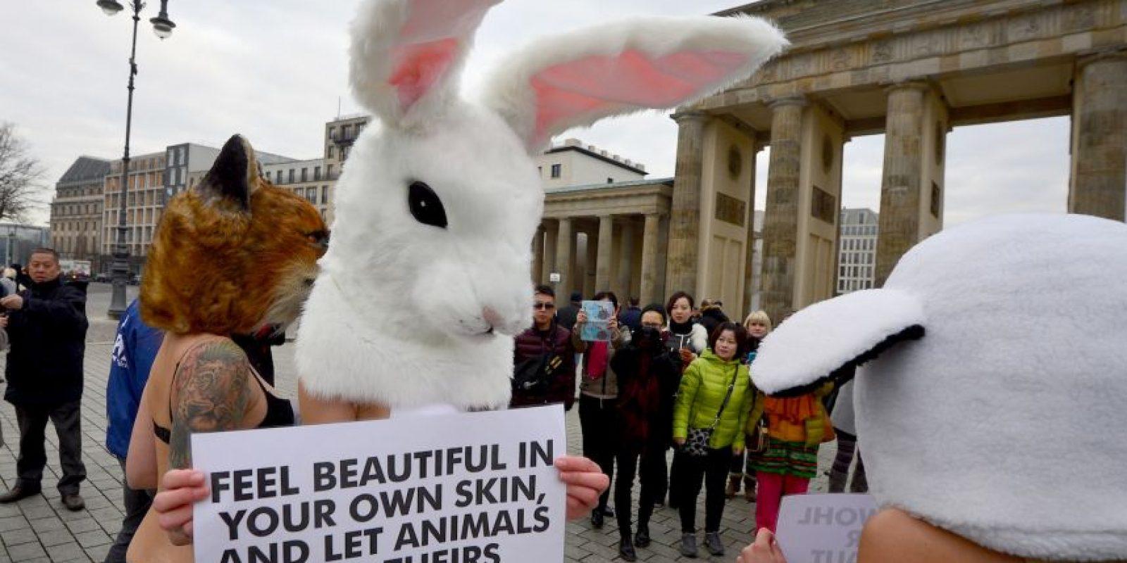 Tras las criticas de la organización defensora de animales, PETA, la escuela decidió eliminar la disección. Foto:Getty Images