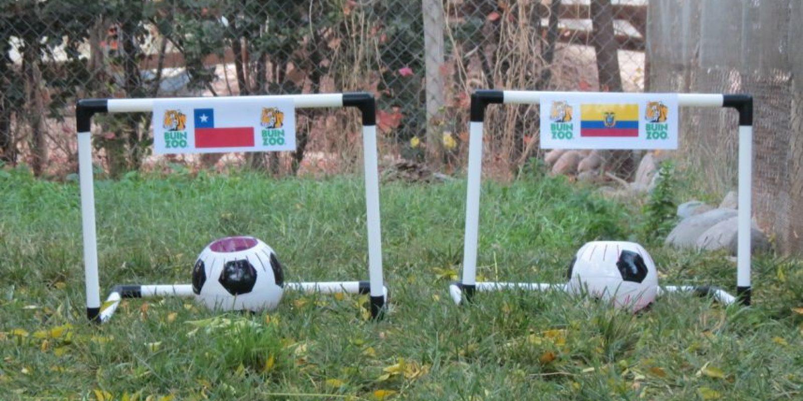 Foto:Publimetro Chile