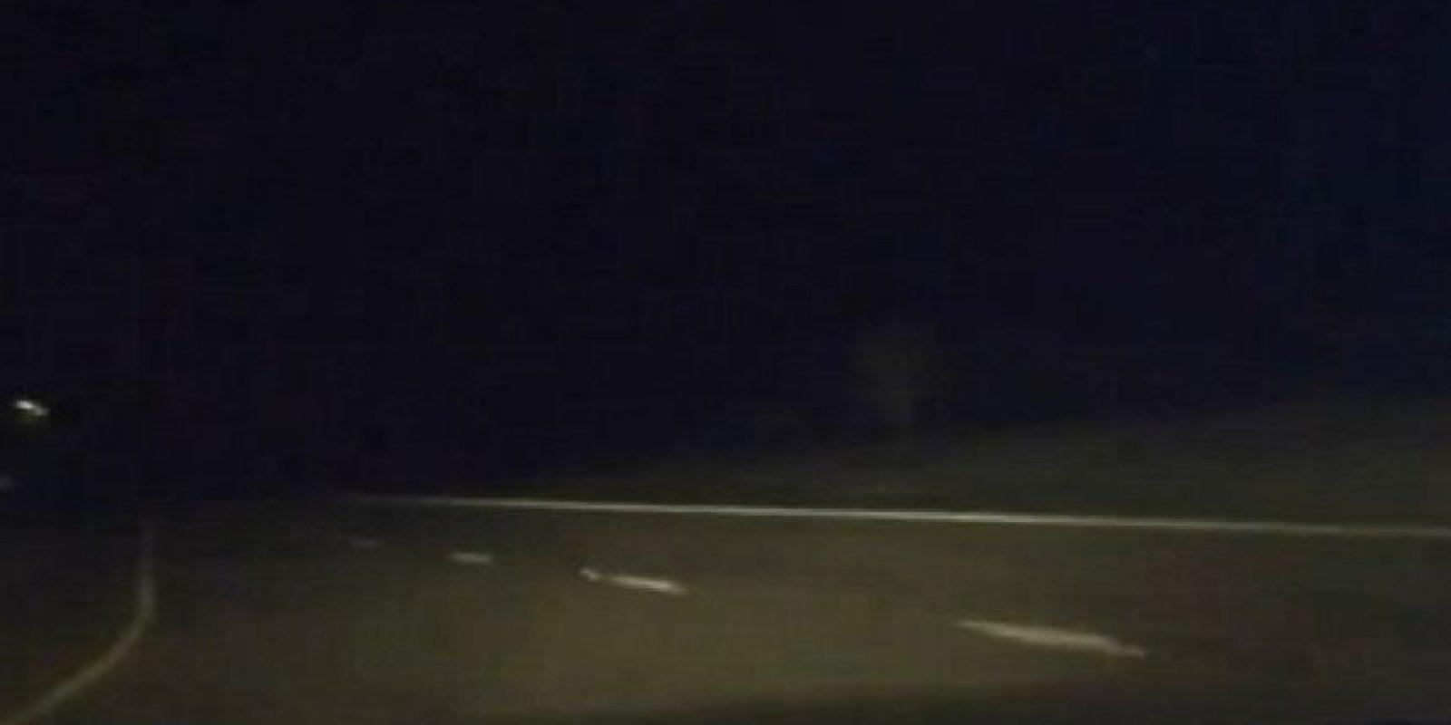 Y casi mata del susto al conductor. Foto:vía DashcamOwners Australia/Facebook