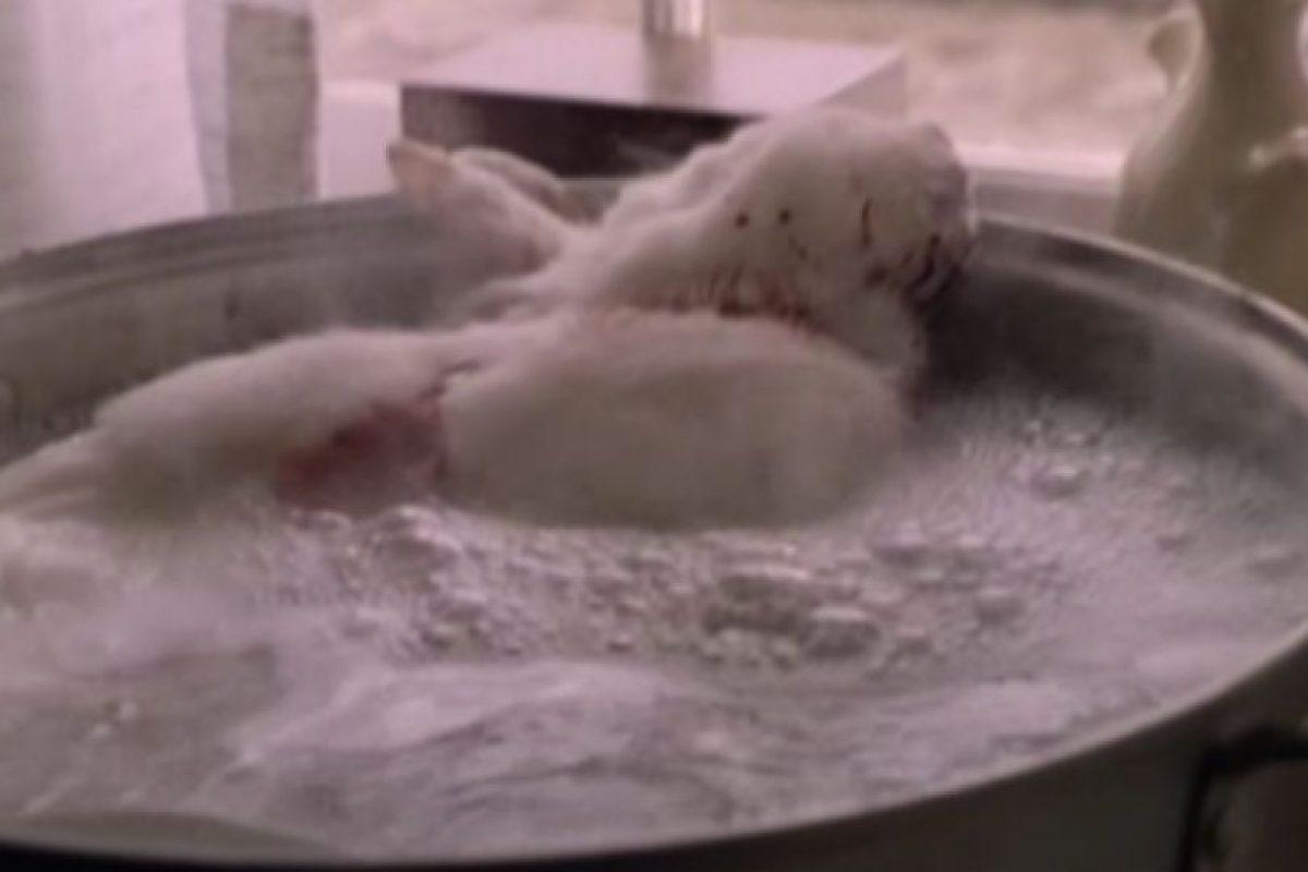 El pobre termina siendo víctima de la loca de Glenn Close. Cosito. Foto:vía Paramount Pictures