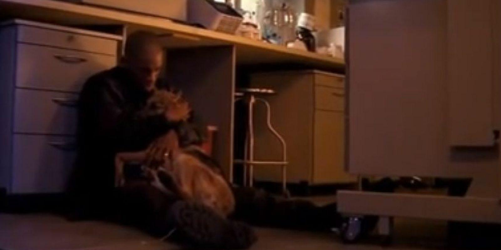 Unos perros infectados la terminan matando. Foto:vía Warner Bros