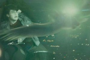 """2. Matan a """"Hedwig"""" en """"Harry Potter"""". Foto:vía Warner Bros"""