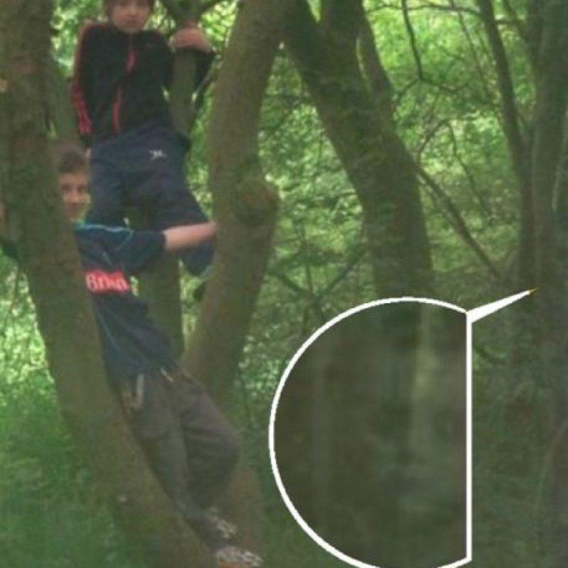 8. ¿Estaban solos estos pequeños al momento de jugar en el bosque? Foto:Imgur