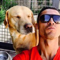 """Y se divierte con sus mascotas, como este labrador llamado """"Marosca"""". Foto:Vía instagram.com/Cristiano"""