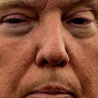 Donald Trump. Foto: vía Celebrity Closeup/Tumblr