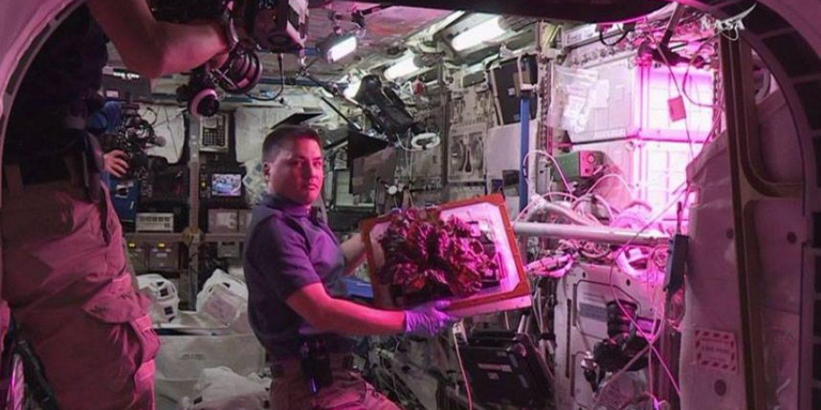 """""""Con la tecnología actual tarda de 150 a 300 días, depende de la posición de la Tierra"""" Foto:Facebook.com/NASA"""
