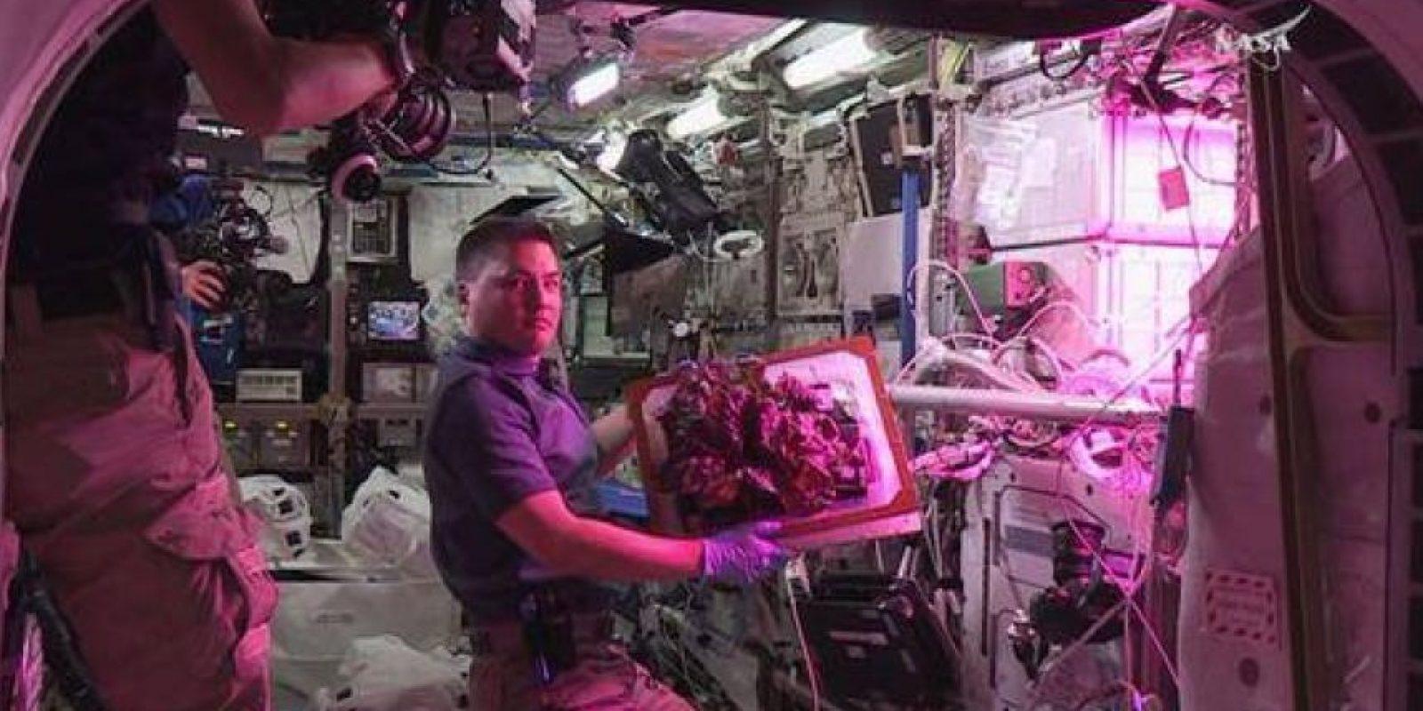 """""""La mayoría de la comida es preenvasada y se lleva a las misiones espaciales, pero tener una gran fuente de productos frescos sería un buen complemento para las dietas de los astronautas, por no hablar de un merecido descanso de las comidas refrigeradas"""". Foto:Facebook.com/NASA"""