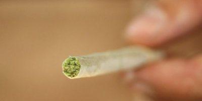 Estas son las consecuencias del abuso de la marihuana, según el director de salud de la OMS. Foto:vía Getty Images