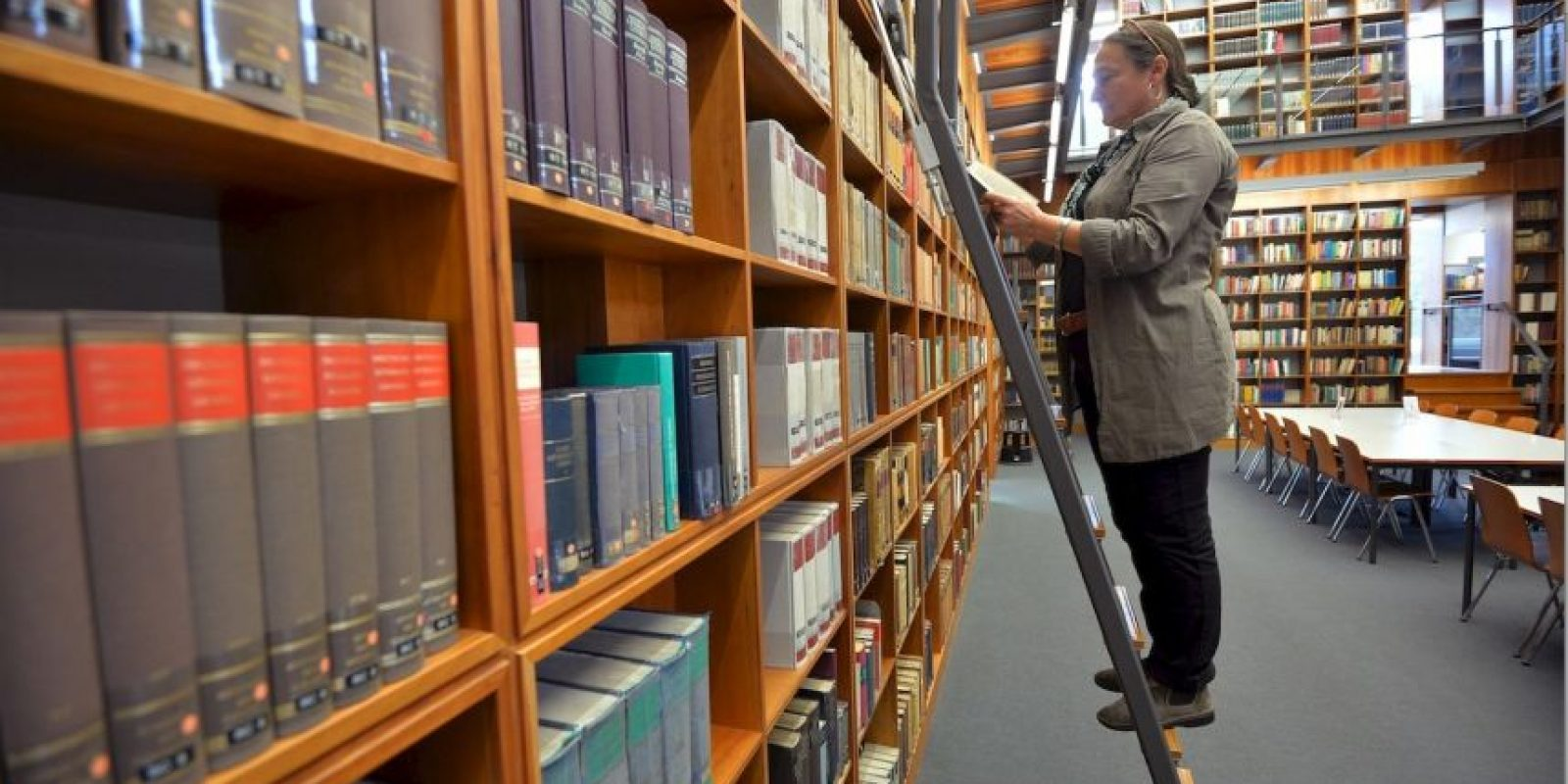 Bibliotecarios – 64.9 % Foto: Getty Images