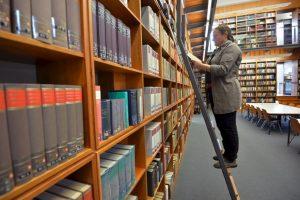 Bibliotecarios – 64.9 % Foto:Getty Images