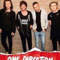 El último concierto que One Direction ofrecerá será el próximo 31 de Octubre en el Morpoint Arena de Reino Unido. Foto:Facebook/OneDirection
