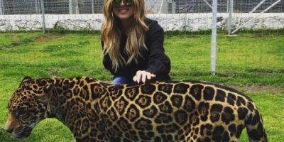 "Khloe Kardashian y Kendall Jenner viajaron a México para ""rescatar felinos"""