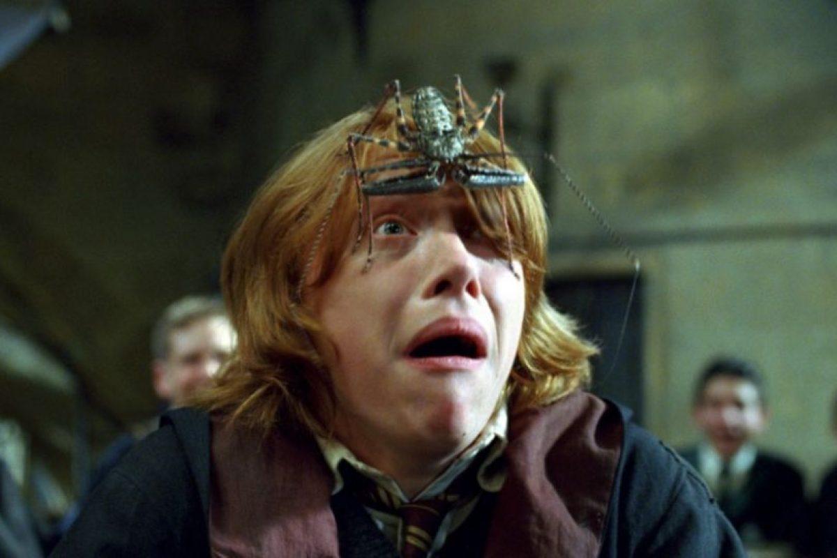 """Al igual que """"Ron"""", Grint padece aracnofobia, que es el miedo a las arañas. Foto:vía facebook.com/harrypottermovie"""