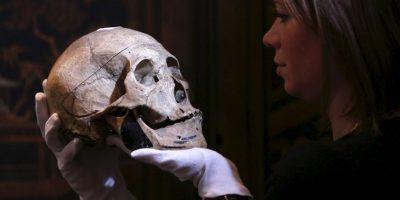 Dos grupos de científicos coincidieron que fueron de origen siberiano. Foto:Getty Images