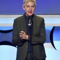 Comediante, actriz y presentadora de televisión estadounidense. Foto:Getty Images