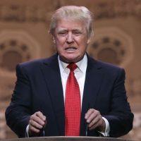 Trump generó polémica al arrancar su campaña presidencial diciendo que obligará a México a pagar un muro fronterizo más grande, por culpa de los migrantes que cruzan a Estados Unidos. Foto:Getty Images