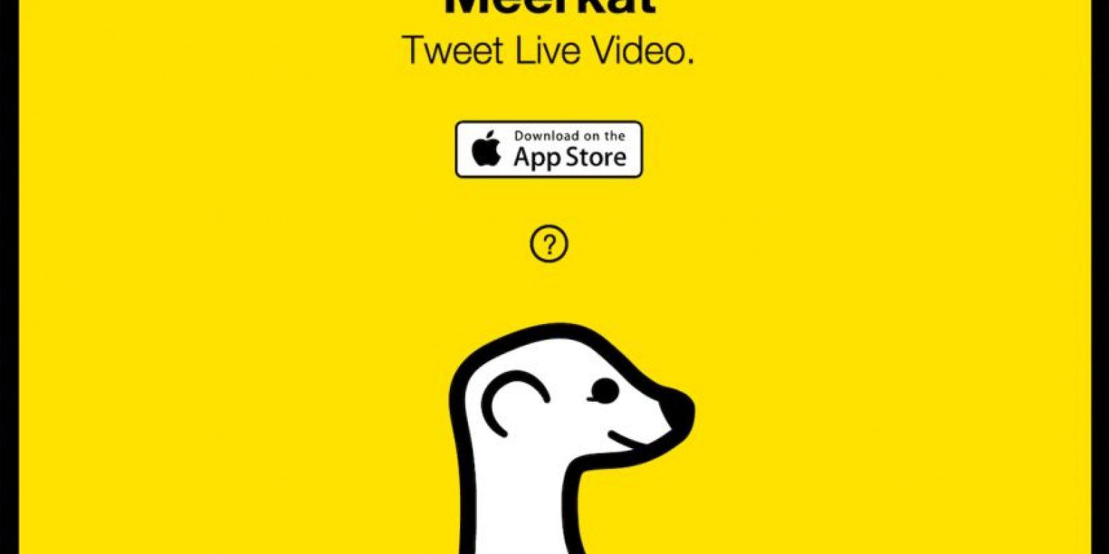 Meerkat significa suricata en inglés. Esta aplicación salió mucho antes que la app oficial de Twitter Foto:Meerkat