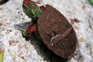 ¿Qué tal una tortuga ninja? Foto:Tumblr
