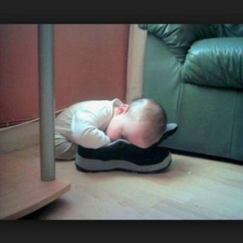 ¿El olor lo dormiría? Foto:Vía Youtube