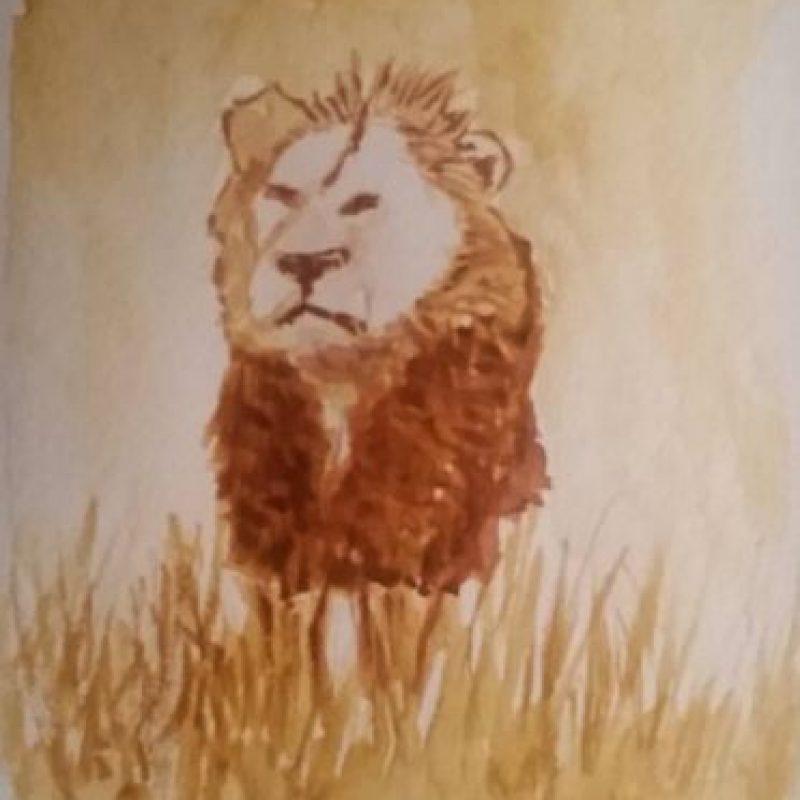 """""""No nos digan qué hacer con nuestros animales cuando prácticamente han extinguido a nuestro león de montaña, el puma. No lloren porque desforestamos la jungla, cuando las suyas las han hecho de asfalto"""". Foto:Vía Instagram/#Cecil"""
