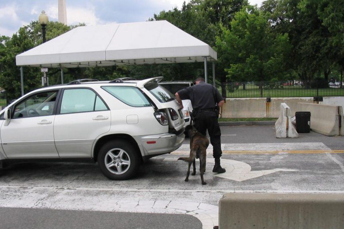 Momentos después fuerzas de seguridad de Carolina del Sur y Georgia se desplazaron a las instalaciones. Foto:Vía wikimedia.org