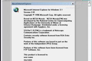 Internet Explorer 2.0 (1995) Foto:Microsoft