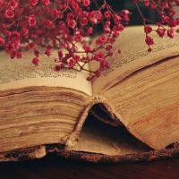 """Los números y el libro se envían a su """"crush"""" para que descubra el mensaje, aunque no deben esperar una respuesta inmediata, menos si el mensaje es largo. Foto:Vía instagram.com/explore/tags/book"""