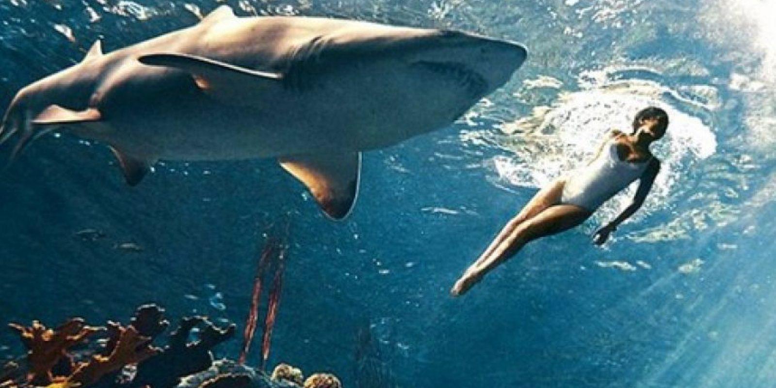 Rihanna se animó a nadar en una piscina llena de tiburones Foto:Harper's Bazaar