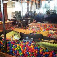 Facebook estrenó su nuevas oficinas en marzo pasado. Foto:instagram.com/bobspace