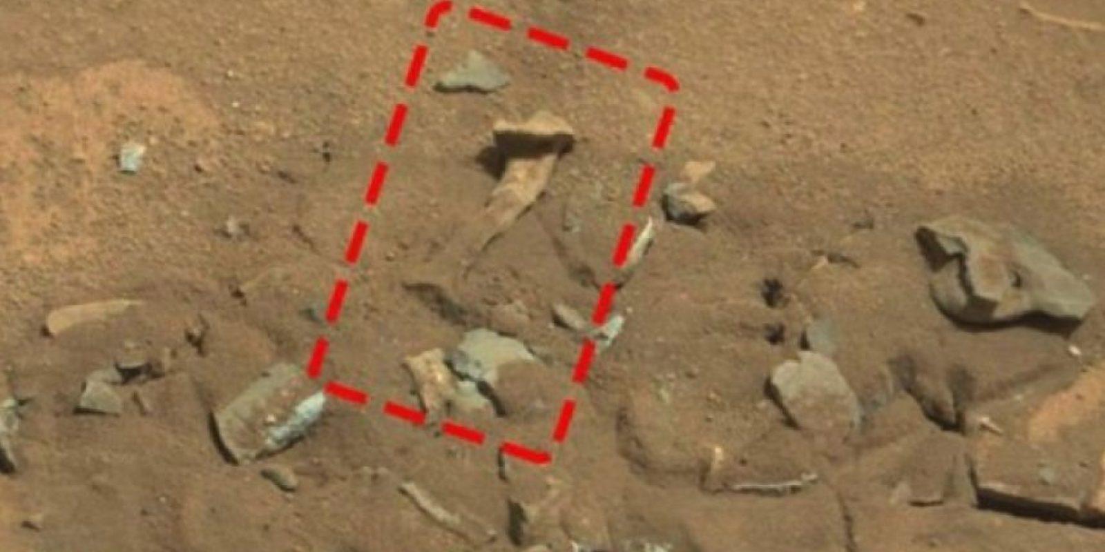 6. Un fémur Foto:NASA