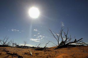 2. Esperan aumentar la generación de energía renovable en un 30 por ciento más para el año 2030. Foto:Getty Images