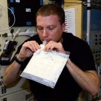 Estos se han hecho famosos por las múltiples fotos y videos que han tomado desde el espacio. Foto:Vía Instagram.com/astro_terry