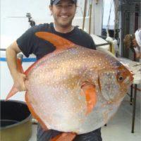 Nicholas Wegner fie uno de los biólogos de la investigación. Foto:Vía swfsc.noaa.gov