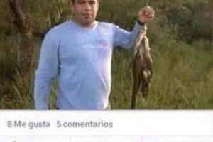 """""""Pescando peces"""" Foto:Vía Facebook"""