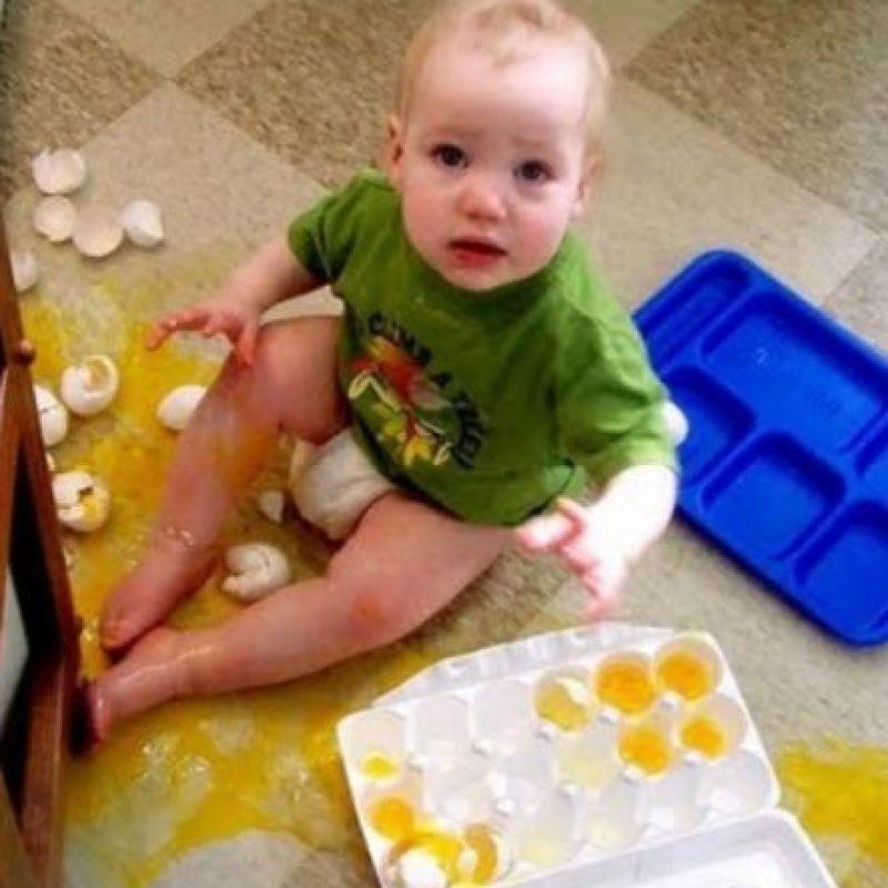 Nunca los dejen cerca de los huevos Foto:Tumblr