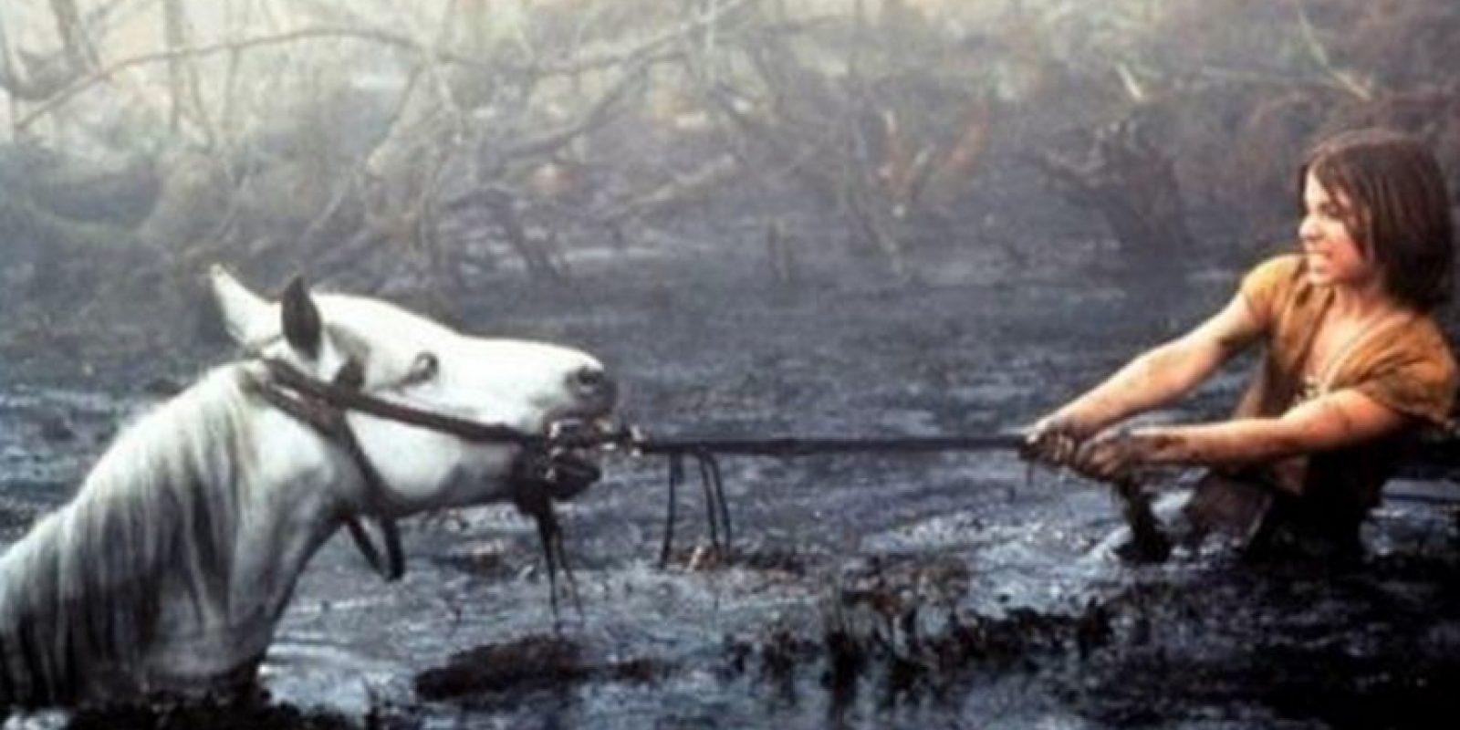 """Artax, el caballo de la """"Historia Sin Fin,"""" murió durante el rodaje de la escena del pantano. Foto:Warner"""