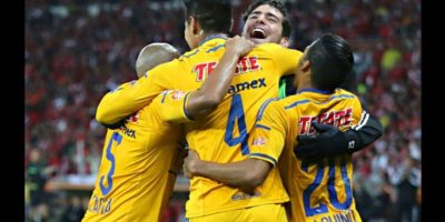 Tigres Foto: Getty Images
