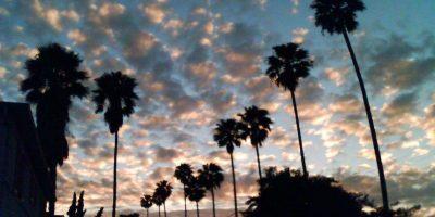 13. Park Windsor, California. 3 de mayo. Magnitud 3.8 Foto:Wikimedia